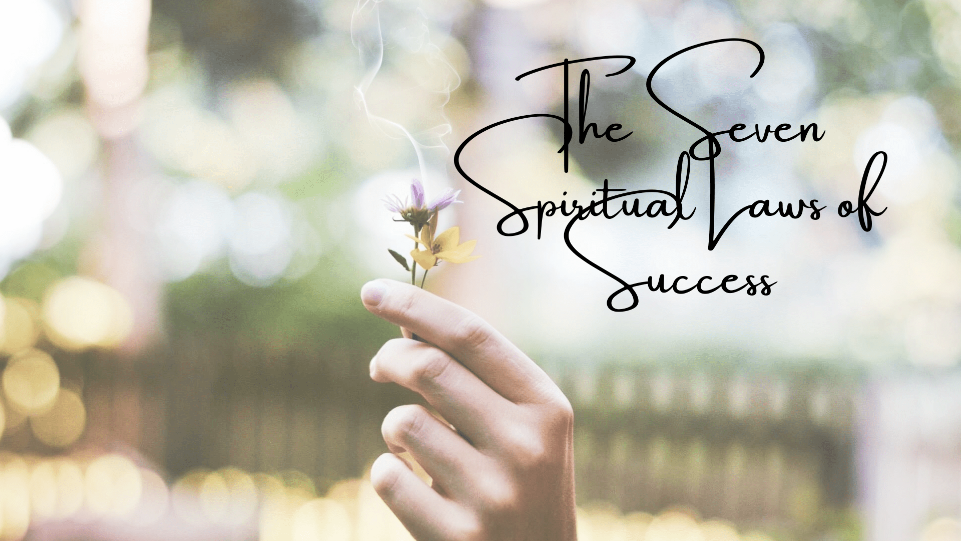 Spiritual Laws of Success: 7 Ways to Sharpen Your Brain