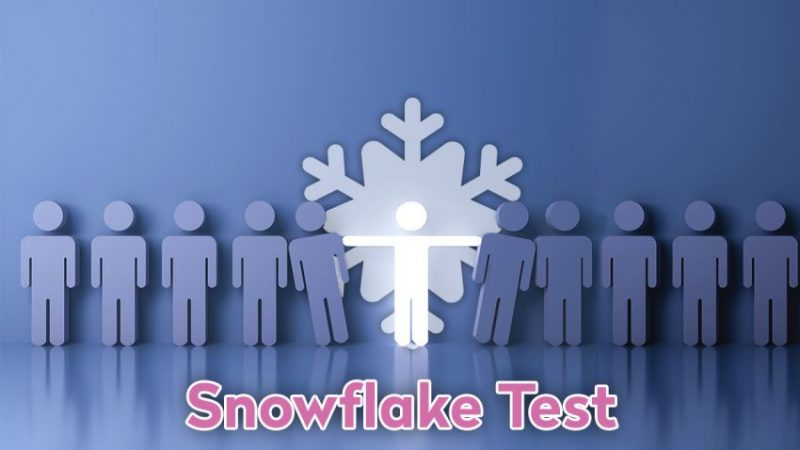 What You Need to Know About the Snowflake Test